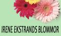 Irenes Blommor